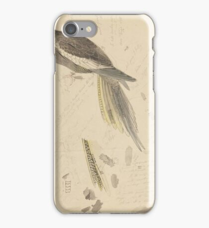 Gray cockatoo - graphite and watercolor drawing iPhone Case/Skin