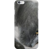 Close Up Portrait Of A Relaxed Grey Cat iPhone Case/Skin