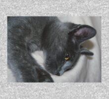 Close Up Portrait Of A Relaxed Grey Cat One Piece - Short Sleeve