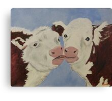 Cozy Cows Canvas Print
