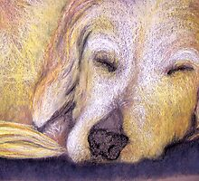 Let Sleeping Dogs Lie by emilykenney