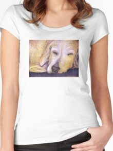 Let Sleeping Dogs Lie Women's Fitted Scoop T-Shirt
