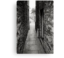 The Promised Land Canvas Print
