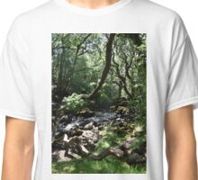 River Avon Classic T-Shirt