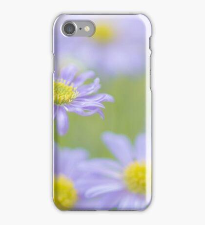 Brachyscome iPhone Case/Skin