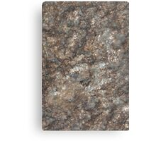 Brown rust stone texture background Canvas Print