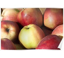 Red apples background Poster