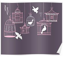 Bird Cage #3  Poster