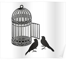 Bird Cage #5  Poster