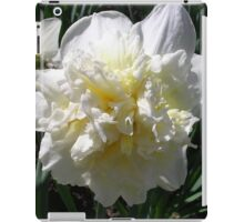 Spring Bloom iPad Case/Skin