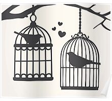 Bird Cage #8  Poster