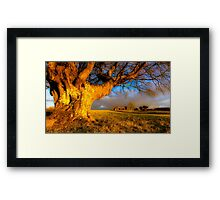 Welsh Evening Light Framed Print