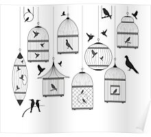 Bird Cage #13  Poster
