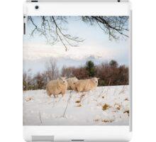 Winter Wool iPad Case/Skin