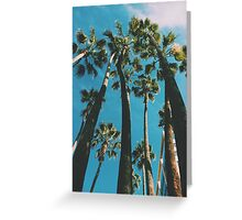 Palm Trees LA Greeting Card