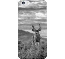 The Majestic iPhone Case/Skin