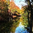 Autumn Park With Bridge by Susan Savad