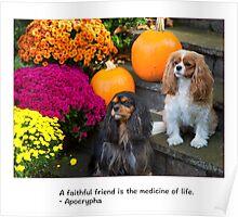 A Faithful Friends Cavalier King Charles Poster