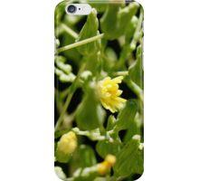 Garden Bloom iPhone Case/Skin