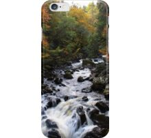 Black Linn Falls iPhone Case/Skin