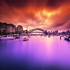 Lavender Bay Colours  by Arfan Habib