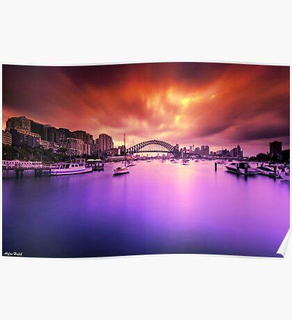 Lavender Bay Colours  Poster