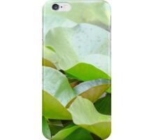 European White Waterlily Leaves iPhone Case/Skin