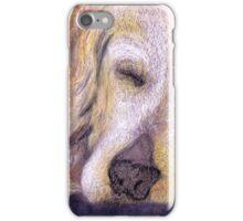 Let Sleeping Dogs Lie iPhone Case/Skin