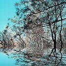 Turquoise ! by Elfriede Fulda