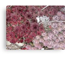 Stonecrop on a Granite Boulder Metal Print