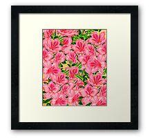 Beautiful Pink Vintage Flowers  Framed Print