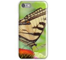 July Swallowtail - Butterfly iPhone Case/Skin