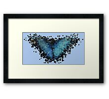Blue Morpho Butterfly Framed Print