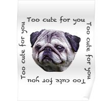Too Cute for You! Pug Poster