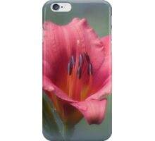 Strawberry and Blue - Daylily iPhone Case/Skin