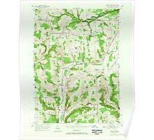 New York NY Beaver Dams 123230 1953 24000 Poster