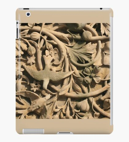 Central Park Relief iPad Case/Skin