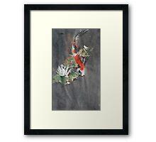 Koi Study Framed Print