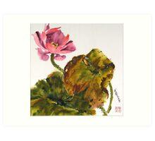 Lotus Blossom, the Flower of the Buddha Art Print
