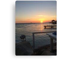 flying fishbone sunset Canvas Print