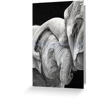 A Gentle Touch - Affectionate Elephants Greeting Card