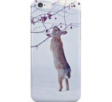 Crabapple Snow Bunny iPhone Case/Skin