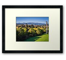 River Trees Framed Print