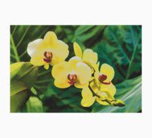 Tropical Impressions - Golden Yellow Orchids Baby Tee