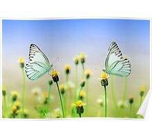Butterflies Spring Nature Scenery Poster