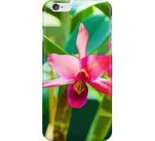 Tropical Impressions - Vibrant Pink Orchids iPhone Case/Skin
