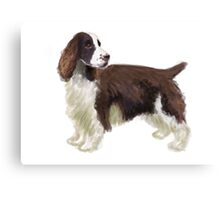 Springer Spaniel Illustration Canvas Print