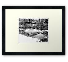 Black and white Pencil Sketch of an Alligator  Framed Print