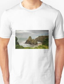 Whipsiderry Swell T-Shirt