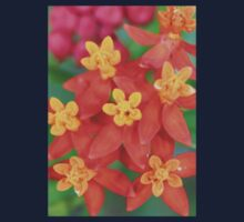 Succulent Red and Yellow Flower Echeveria Kids Tee